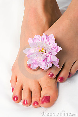Free Woman Foot With Flower Chrysanthemum Stock Photos - 2031453