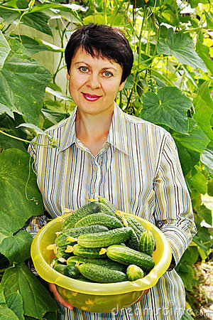 Woman with fresh cucumbers