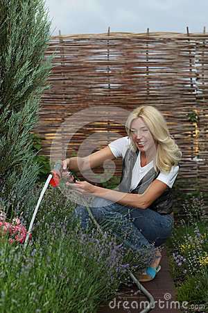 The woman gardener
