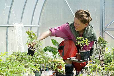 Woman In The Greenhouse