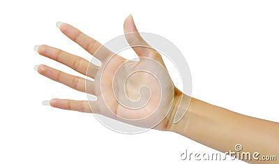 Woman hand (palm)
