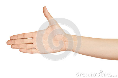 Woman hand (palm) isolated