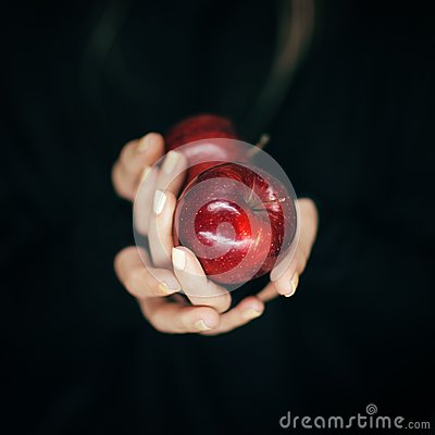 Free Woman Hands Holding Some Red Apples, Sensual Studio Shot Royalty Free Stock Photography - 106361417