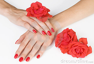 Woman hands with scarlet manicure and roses