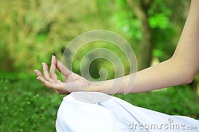 Woman hands in yoga