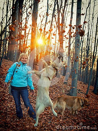 Woman with her dogs in the woods at play