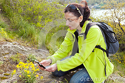 Woman hiker  taking photographs of wild flowers