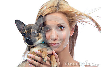 Woman hold small Chihuahua puppy dog