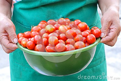 Woman holding a basin with cherry tomatoes