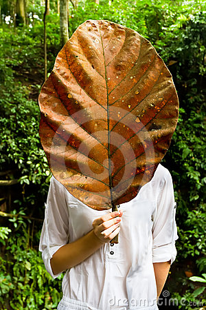 Woman holding a giant dry leaf