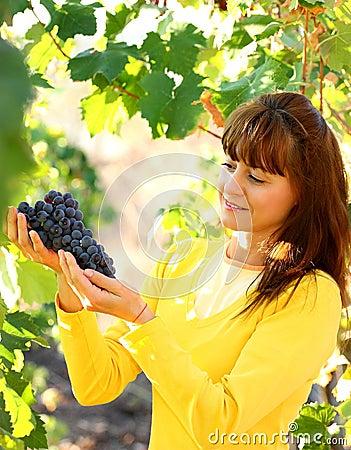 Woman holding grape in vineyard