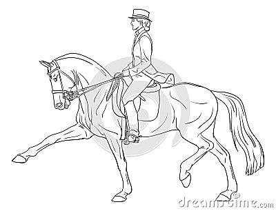 Woman horse dressage