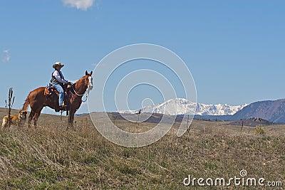 Woman on horseback with dog