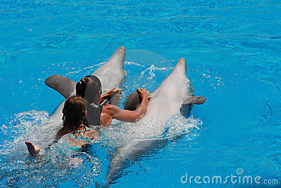 Woman and kid swimming with the dolphins Editorial Stock Photo