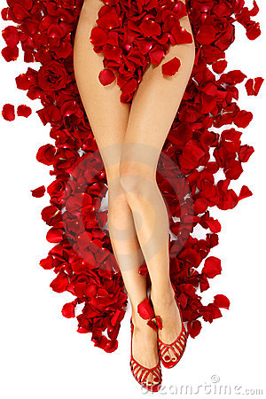 Woman legs on rose petals