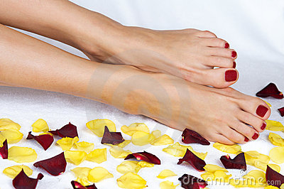 Woman legs in rose petals