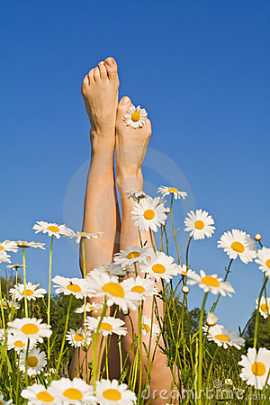 Free Woman Legs With Spring Or Summer Flowers Stock Photos - 5481373
