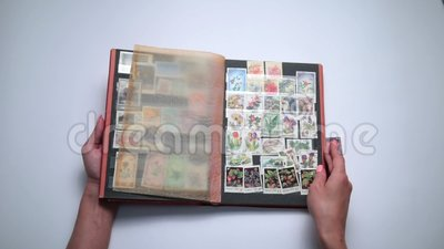 Woman looking through old stamps collection stock video