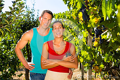 Woman and man standing in vineyard