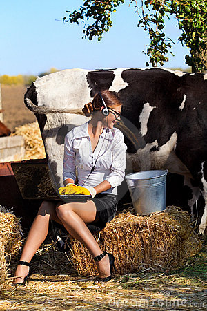 Woman Milking Cow Royalty Free Stock Photo Image 22731425