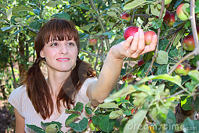 A woman picking apple