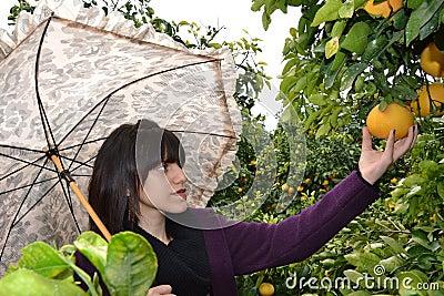 Woman picking an orange