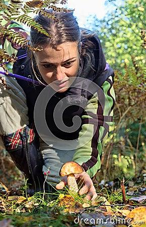 Woman  picking up Mushrooms
