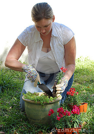 Free Woman Planting Flowers Royalty Free Stock Image - 4546076