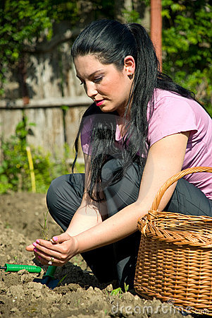 Woman planting in garden
