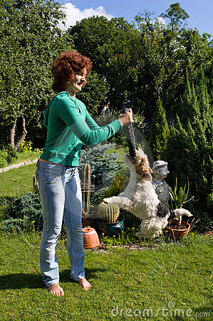 Woman play with fox-terrier