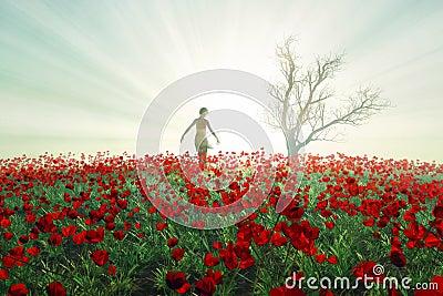 Woman on the poppy field