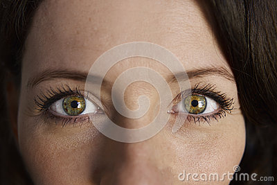 closeup of bright green eyes looking straight and then to ...