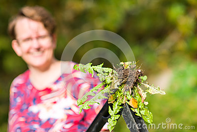 Woman pulling weeds