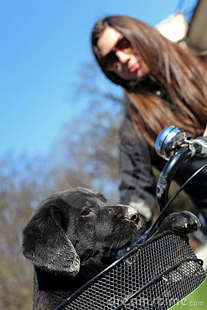 Woman puppy and bike