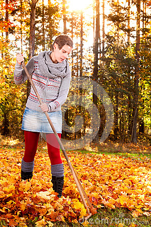 Woman raking vivid yellow autumn leaves