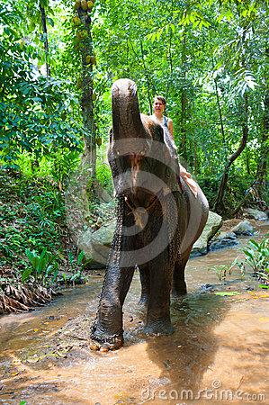 Woman riding on an elephant