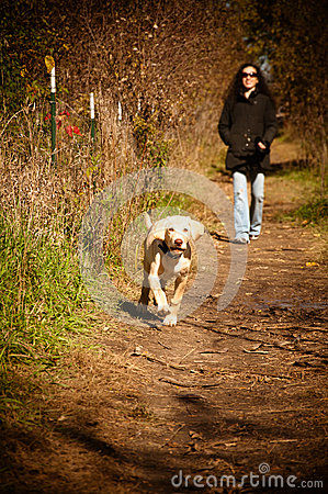 Woman running with her dog in the woods