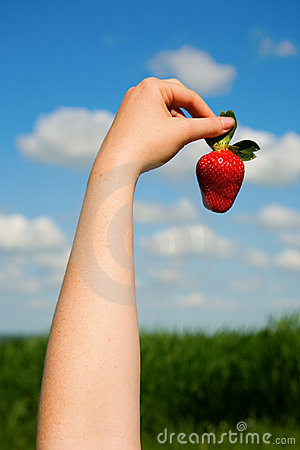Woman s hand holding a strawberry