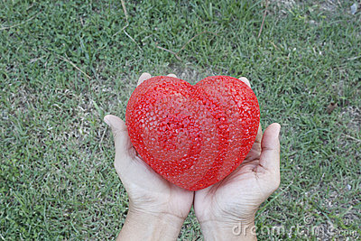 Woman s hands holding heart over grass