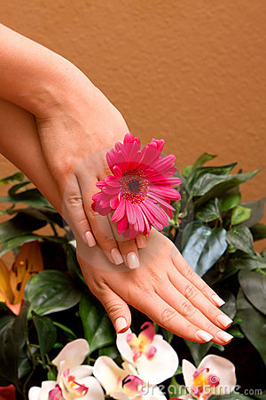 Woman s manicured hands