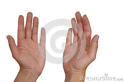Woman s palm