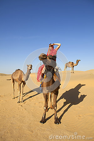 Woman In Sari Riding A Camel. Stock Photos - Image: 25106173