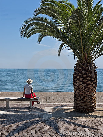 Woman sat under palm tree in sunshine