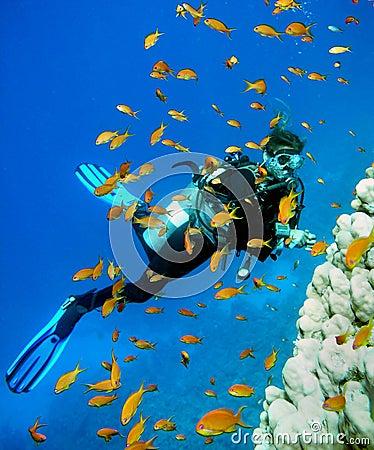 Free Woman Scuba Diver Royalty Free Stock Photo - 5444375