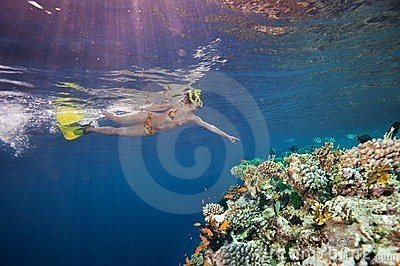 Woman scuba diver pointing to corals