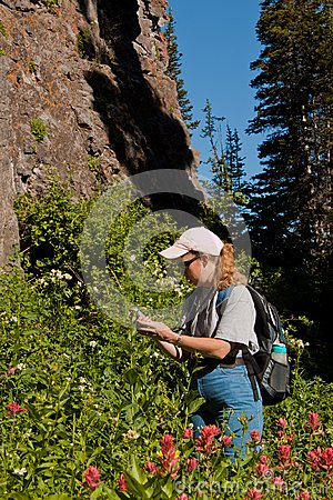 Woman searching for a geocache