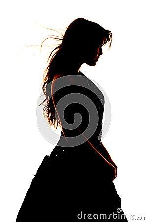 Free Woman Silhouette Formal Dress Close Stock Photo - 35164300