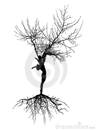 Woman silhouette with roots
