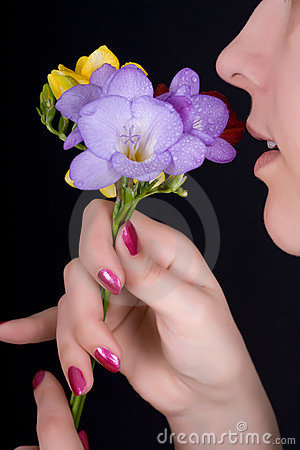 Free Woman Sniffing Flowers, Freesia Royalty Free Stock Photos - 23982158