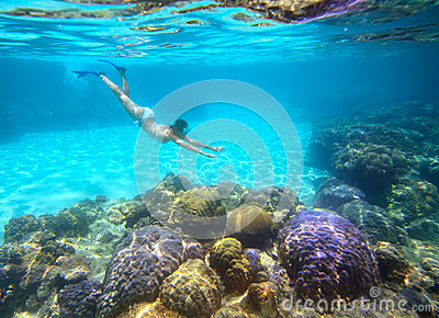 A woman snorkeling in the beautiful coral reef with lots of fish